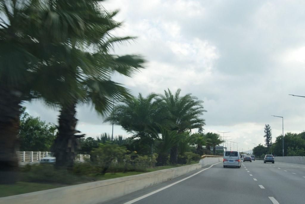Дорога возле набережной залива Шэньчжэнь, ноябрь